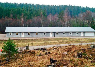 Stallet Kustmarkens Hundtjänst avel dressyr ledarhundar